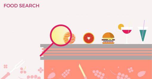 امکان جستجو میان غذاها