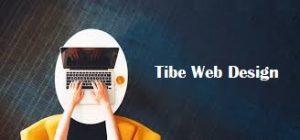 تیم طراحی سایت تایب